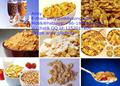 Automática del desayuno copos de maíz/cereales procesamiento de la planta