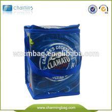 Custom Supermarket Solar Panel Cooler Bag