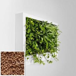 Lightweight Clean Garden Soil For Vertical Green Wall