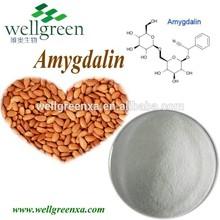 hot selling chinese GMP supply 98% Amygdalin/Vitamin B17 98% Amygdalin/Vitamin B17 apricot vitamin b 17
