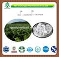مستخلصات الاعشاب استخراج أوراق التبغ مادة سولانسول