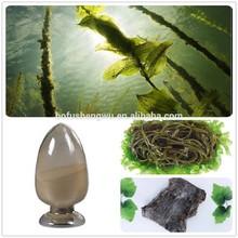 kombu kelp seaweed/kombu kelp seaweed powder/kombu kelp seaweed extract