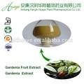Casher certifié @ gardenia jasminoides ellis extrait poudre @ traiter maladies de la vésicule biliaire
