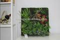 Hermosas plantas de la pared del vestíbulo/oficina/decoración de la habitación artificial colgando de la pared mini artificial de plantas colgantes