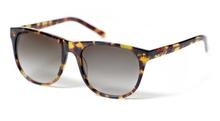 Custom Designer Tortoise wayfarer sunglasses wholesale for women