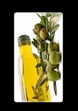 Turkey olive oils Shenzhen buyer information