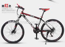 21S Alloy Mountain Bike Giant