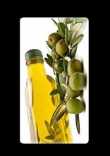 Portuguese extra virgin olive oils Guangzhou distributor information