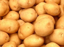 Russian importers of potato