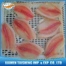 Frozen Tilapia Fillet Price Good Quality