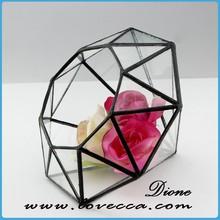 Diamond Shape Geometric Glass Terrarium, Modern Planter