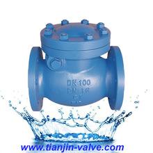 api swing check valve