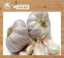 Natural health fresh normal white garlic