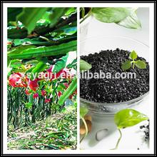 Potassium Humate Granular/Green Agriculture/Humic Acid 60%