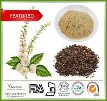 100% Natural Triterpene Glycosides 8% Black Cohosh Extract