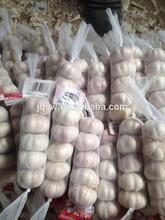 5pcs ,10kg /carton , size 5.5 normal white fresh natural garlic price