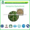 bv certifiéefermeture top qualité au meilleur prix chlorhydrate stachydrine