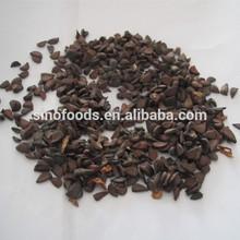 100% pure red lady papaya seeds planting papaya seeds