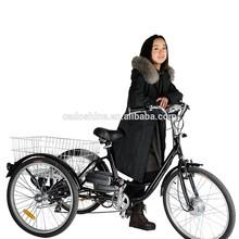 Beiji Vehicle three wheel electric motor bike
