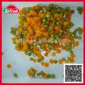 canne alimentos corp nueva frutas y verduras con calidad superior