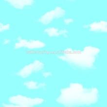 SWVM-1581 Cloud Wallpaper, Wallpaper for Bedroom, Blue Sky Wallpaper