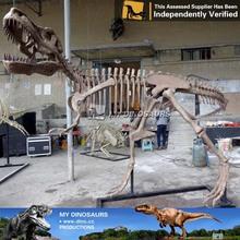 N-C-W-235-free cartoon movie dinosaur skeleton model