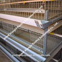 2015 Professional Galvanized Automatic bird cage materials