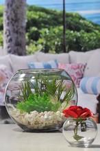 ball glass vase with flower VA1621