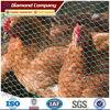 galvanized hexagonal chicken wire netting chicken coop wire mesh