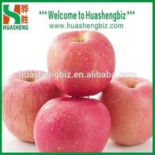 Chinese New Seasonal Fresh Fuji Apple/Sweet Red Fuji Apple Fruit/Apple Exporting Prices