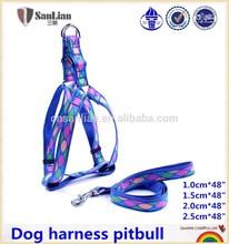 Pet color belt-dog safety harness leash sets dog harness pitbull