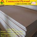 Uso al aire libre 4'x8' barato de madera contrachapada comercial chapas de madera