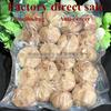Important!! to buy black garlic must see... chinese garlic garlic extract china garlic price