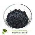 Castor de refeições/mamona sementes refeição/farelo de mamona fertilizantes