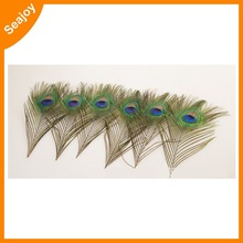 retailing big exotic 25-30cm 80-90cm white peacock feathers
