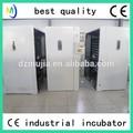 Dezhou best-seller mujia marca de máquinas industriais de incubadoras de ovos para incubação com ce
