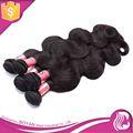 Calidad excepcional 100% Natural del pelo humano podría ser teñido cualquier Color de fábrica extensión del pelo ruso