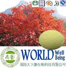 Fisetin 98%/Smoke Tree Extract/Cure skin disease