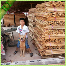 Natural eucalyptus wood broom sticks made of raw material