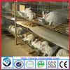 Cheap breeding rabbit cage/ Rabbit Cage for sale (skype:yizemetal3)
