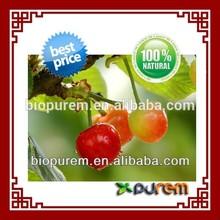 100% natural Acerola extract vitamin c extract Powder, CAS: 4350-09-8