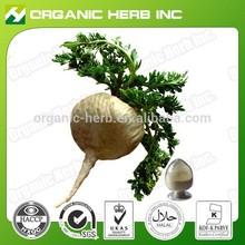 Pure natural maca root extract powder
