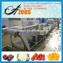 Bajo precio y de lavado de frutas de la máquina / fruta de la máquina lavadora