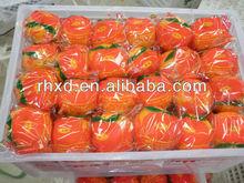 2015 New Crop Fresh Mandarin Orange On Hot Saling Manufacturers