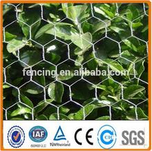 Anping factory Hexagonal Wire Mesh/Chicken Wire Netting