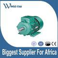 30kw 40hp motori elettrici per ventola di raffreddamento
