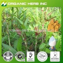 Natural resveratrol Giant Knotweed root Extract powder |Giant Knotweed Extract