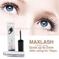Maxlash natural de crecimiento de las pestañas líquido del suero( #1 de extensión de pestañas pegamento)
