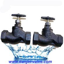 fange type globe valve
