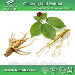 Free Sample Korean Ginseng in Capsule/Korean Red Ginseng Extract Capsule